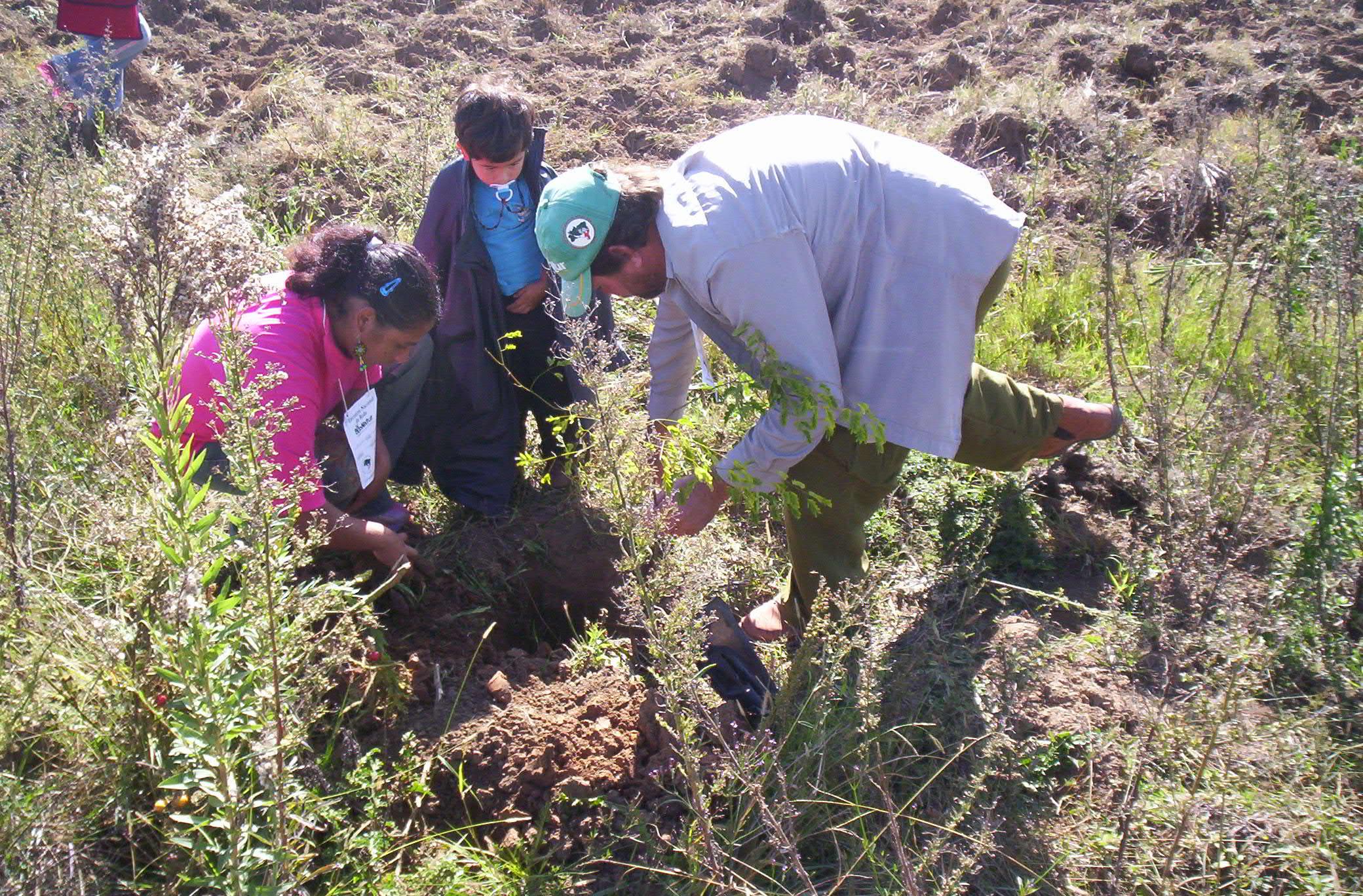 REDES-Amigos de la Tierra Uruguay